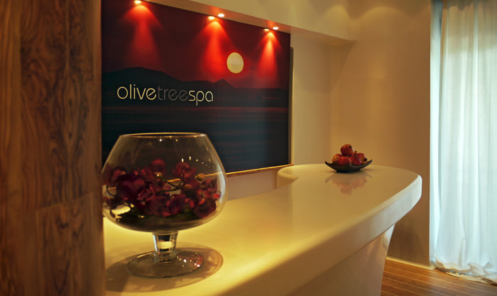 """Olive Tree Spa"" - logo design - reception area"